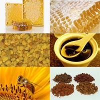 Лечение бесплодия продуктами пчеловодства