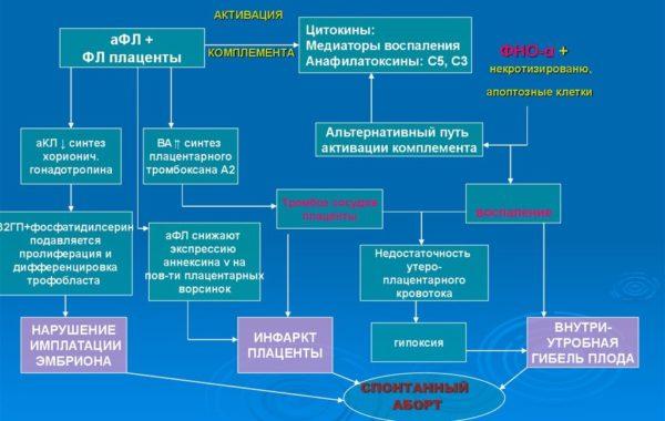 патогенез